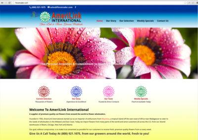 Amerilink International